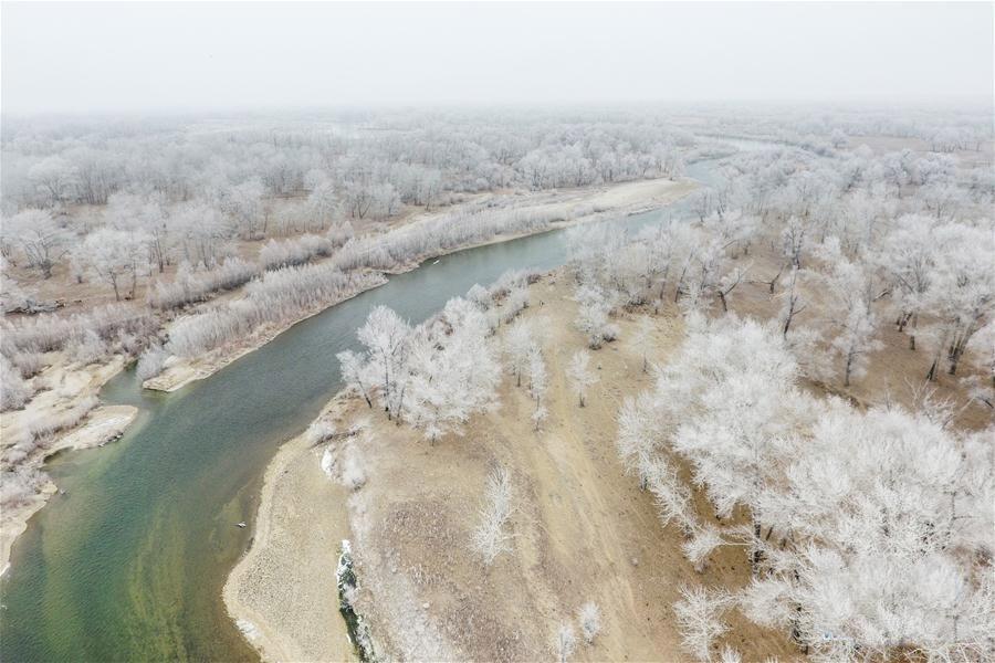 新疆額爾齊斯河流域現霧凇景觀