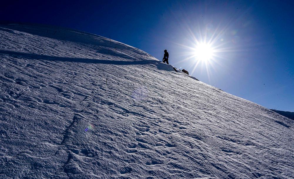天山追雪記
