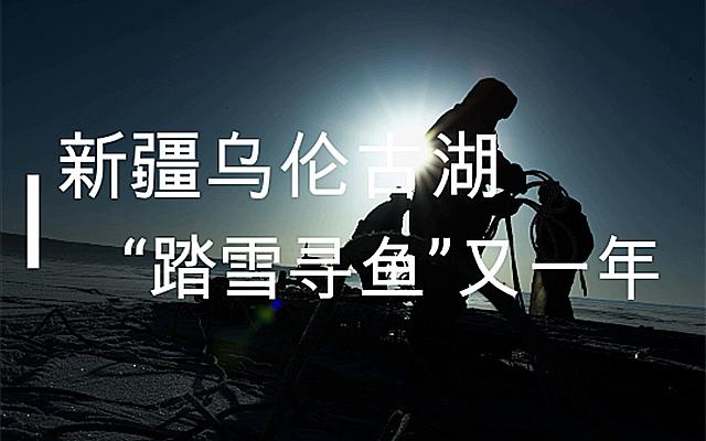 """新疆烏倫古湖:""""踏雪尋魚""""又一年"""