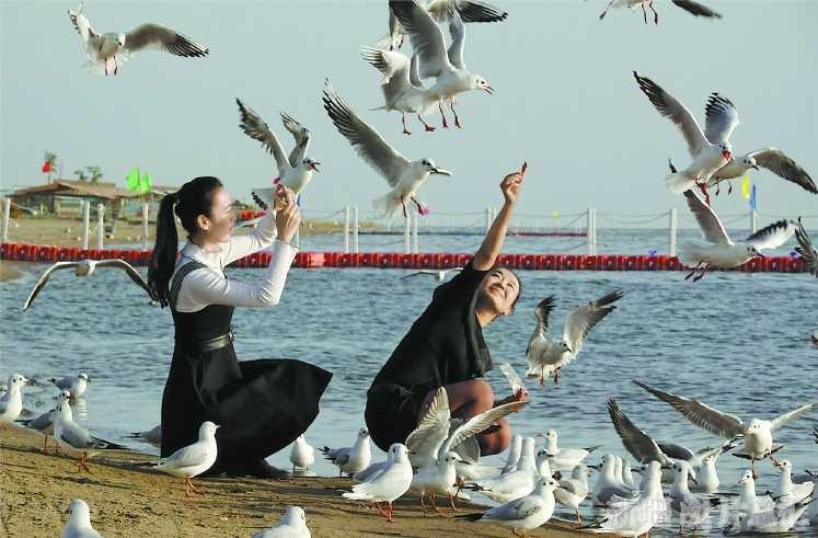候鳥棲息引客來