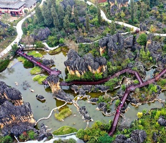 雲南:黑石箐石林生態美