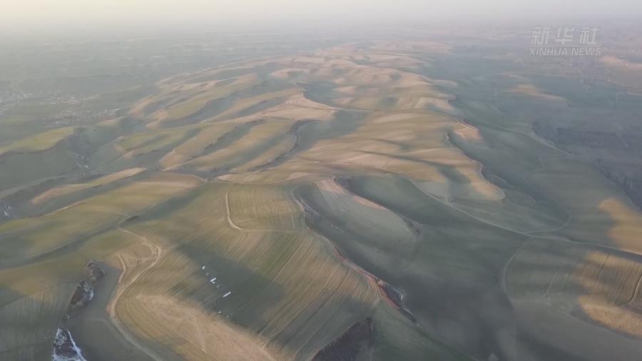 万亩旱田动带:大地的调色板